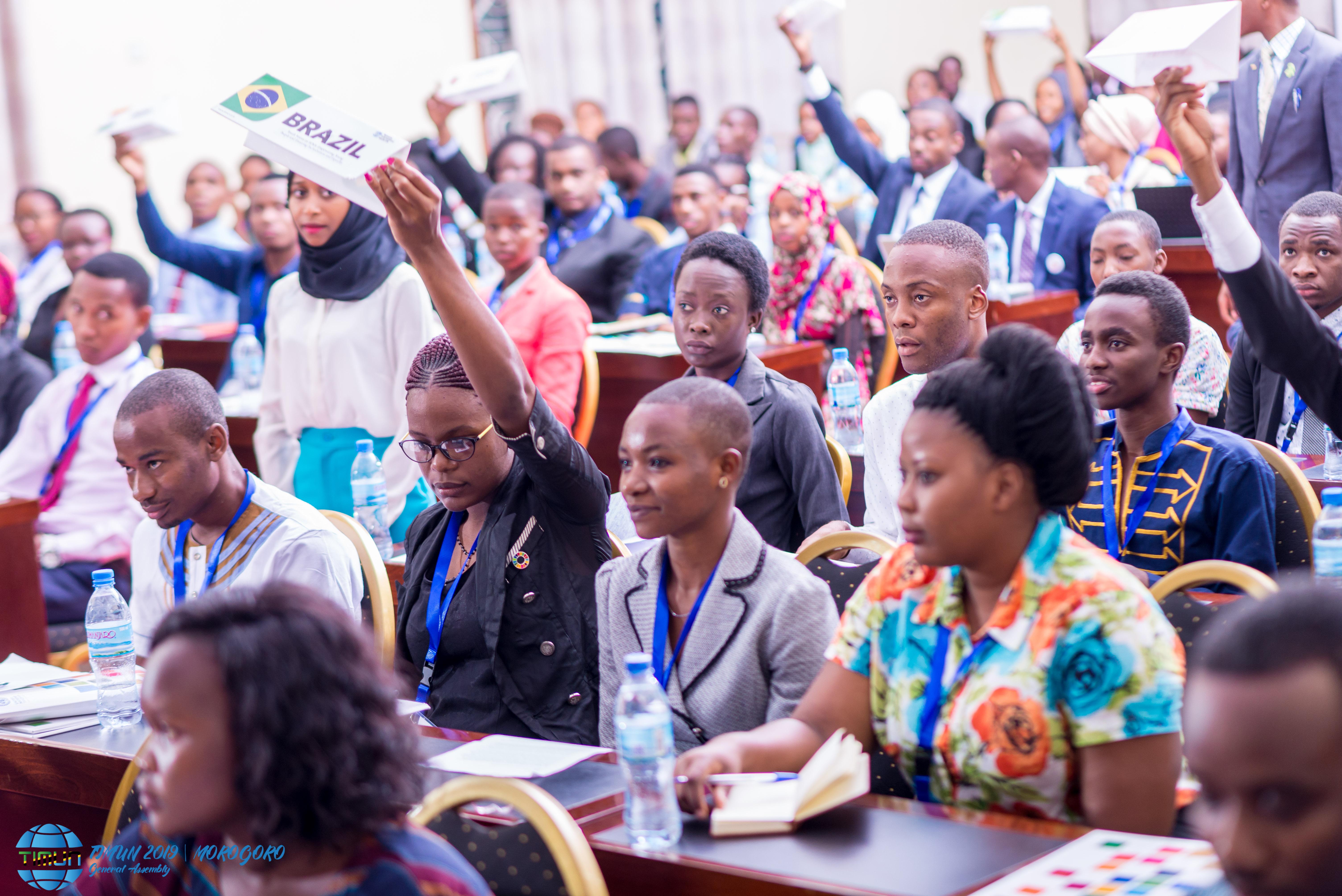 2019 Tanzania International Model United Nations (TIMUN)