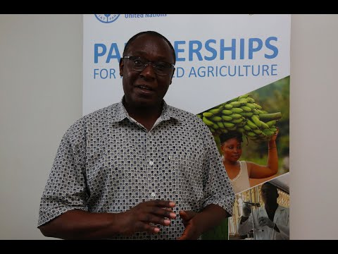 UN 75 : Mahojiano na Charles Tulahi, Mwakilishi Mkazi Msaidizi FAO Tanzania.
